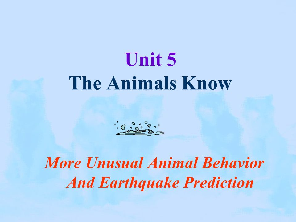 More Unusual Animal Behavior And Earthquake Prediction