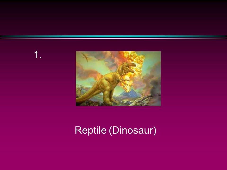 1. Reptile (Dinosaur)