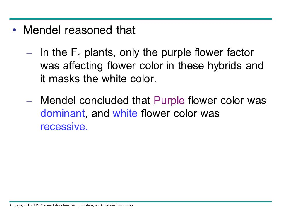Mendel reasoned that In the F1 plants, only the purple flower factor was affecting flower color in these hybrids and it masks the white color.