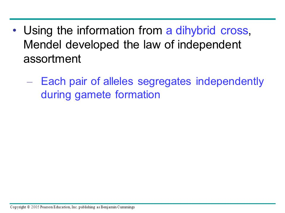 Using the information from a dihybrid cross, Mendel developed the law of independent assortment
