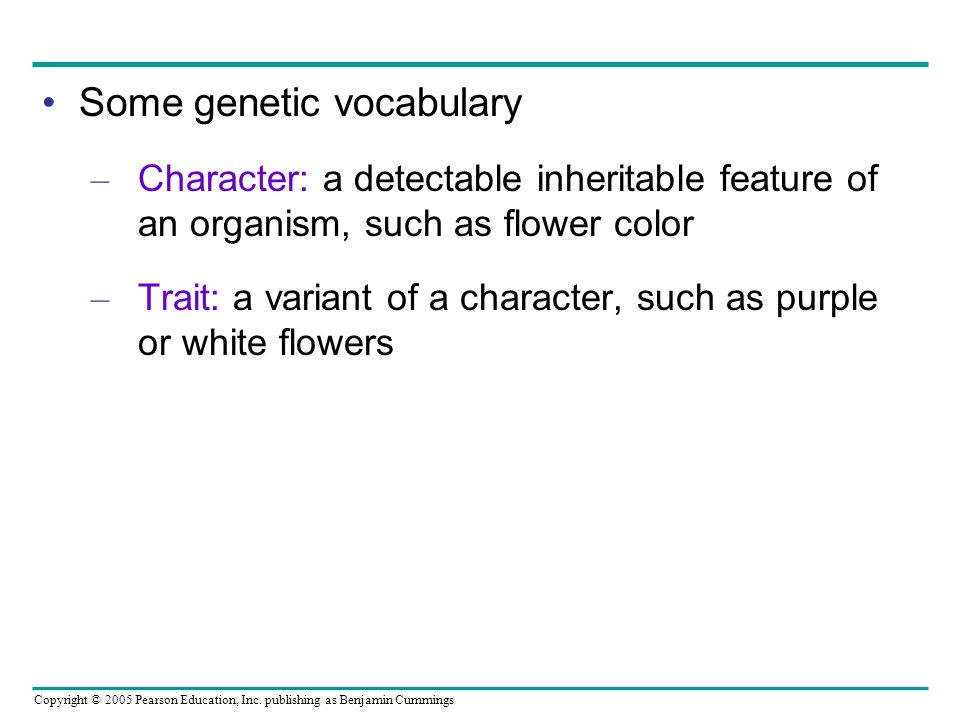 Some genetic vocabulary