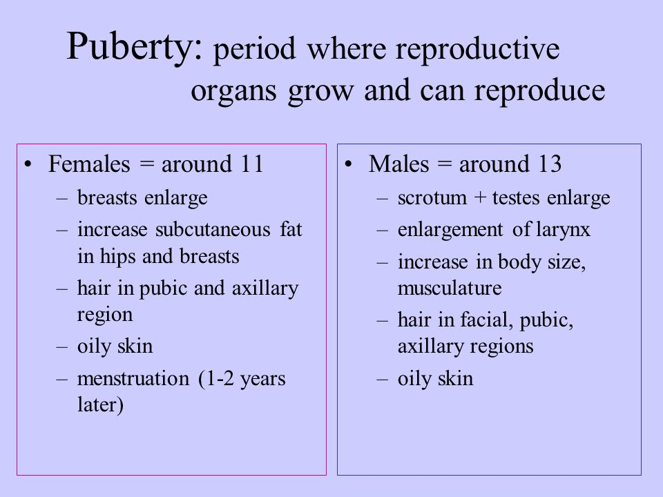 Puberty: period where reproductive organs grow and can reproduce