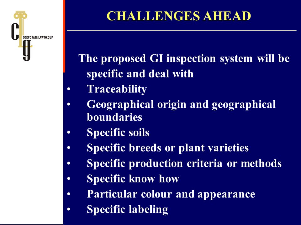 CHALLENGES AHEAD The proposed GI inspection system will be