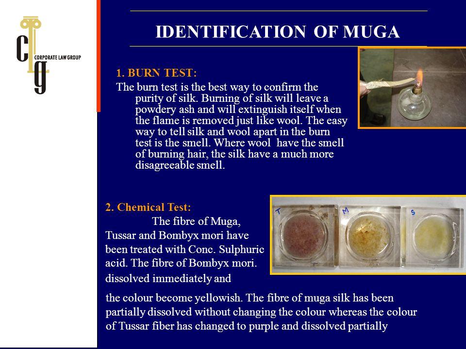 IDENTIFICATION OF MUGA