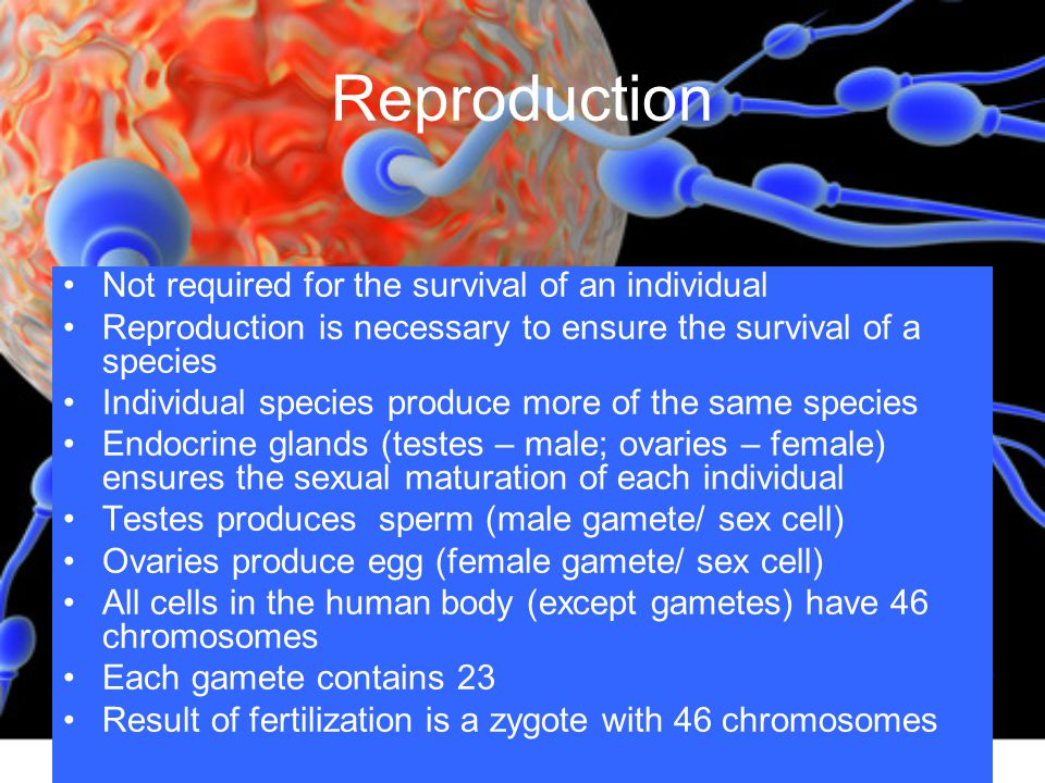 Reproduction Not required for the survival of an individual