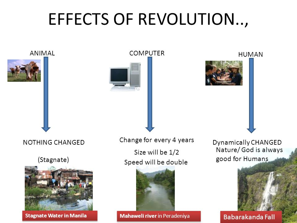 EFFECTS OF REVOLUTION.., ANIMAL COMPUTER HUMAN
