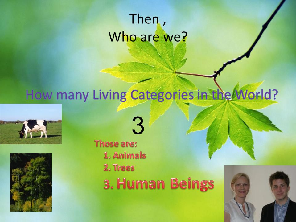 3 Then , Who are we How many Living Categories in the World