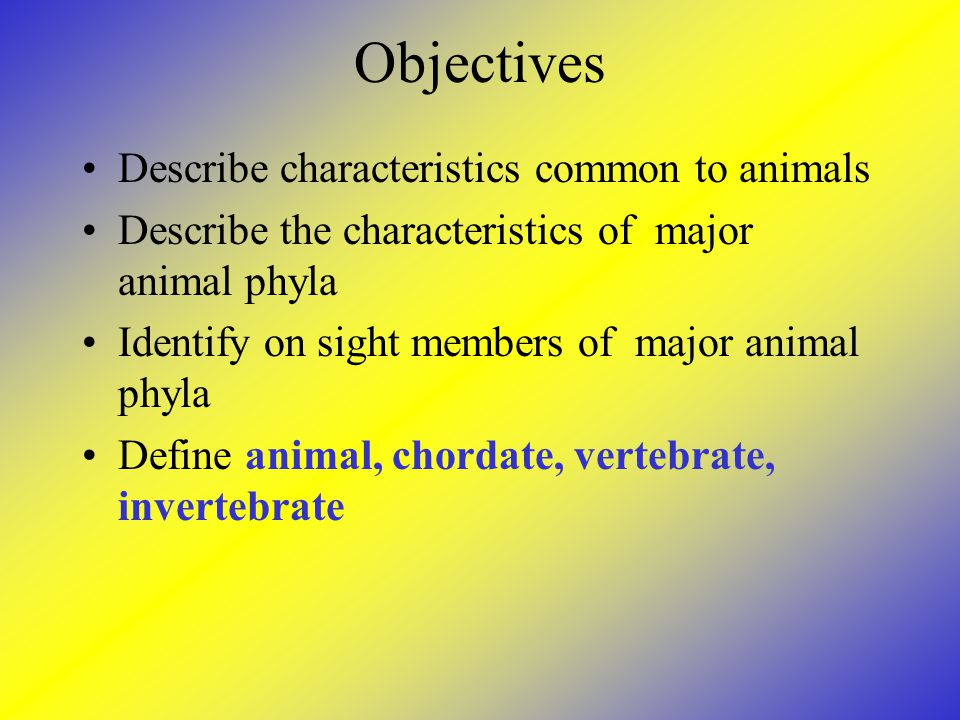Objectives Describe characteristics common to animals