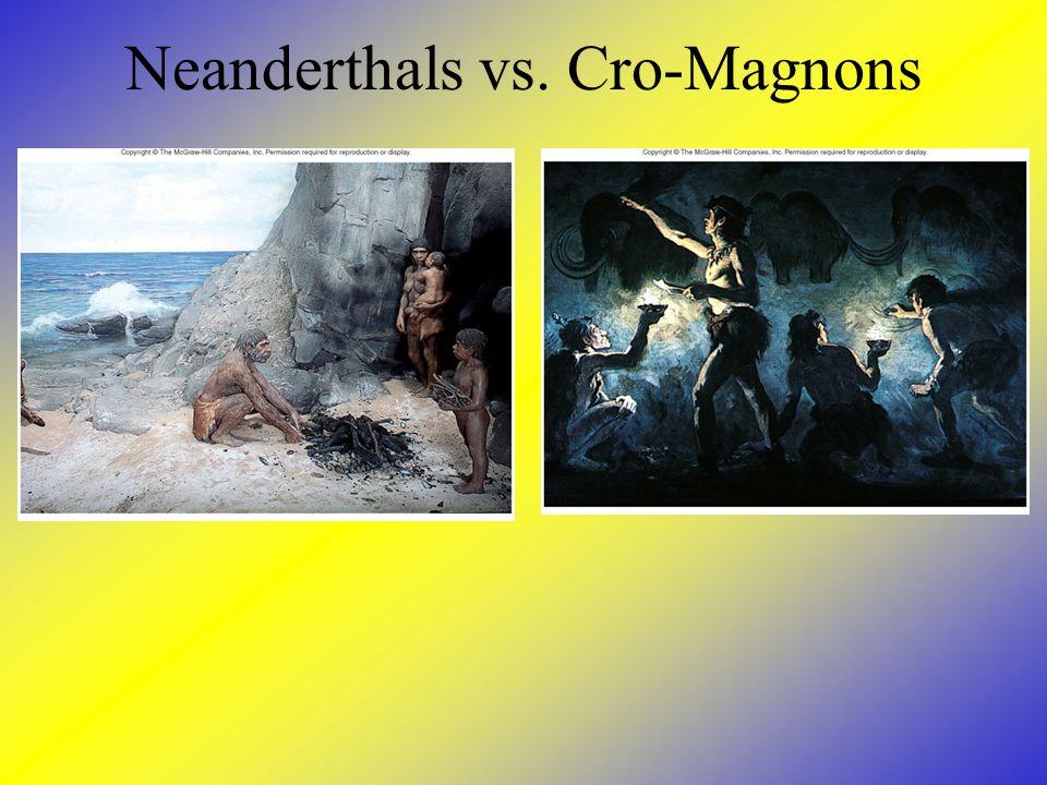 Neanderthals vs. Cro-Magnons