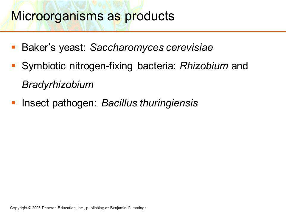 Microorganisms as products
