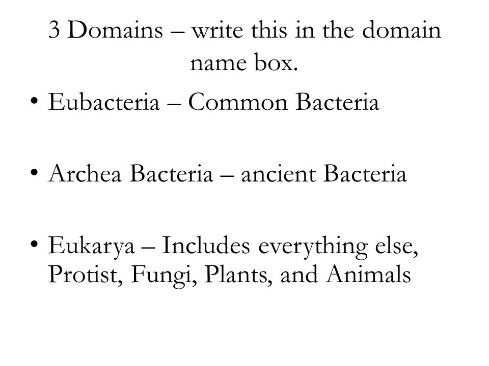 3 Domains – write this in the domain name box.