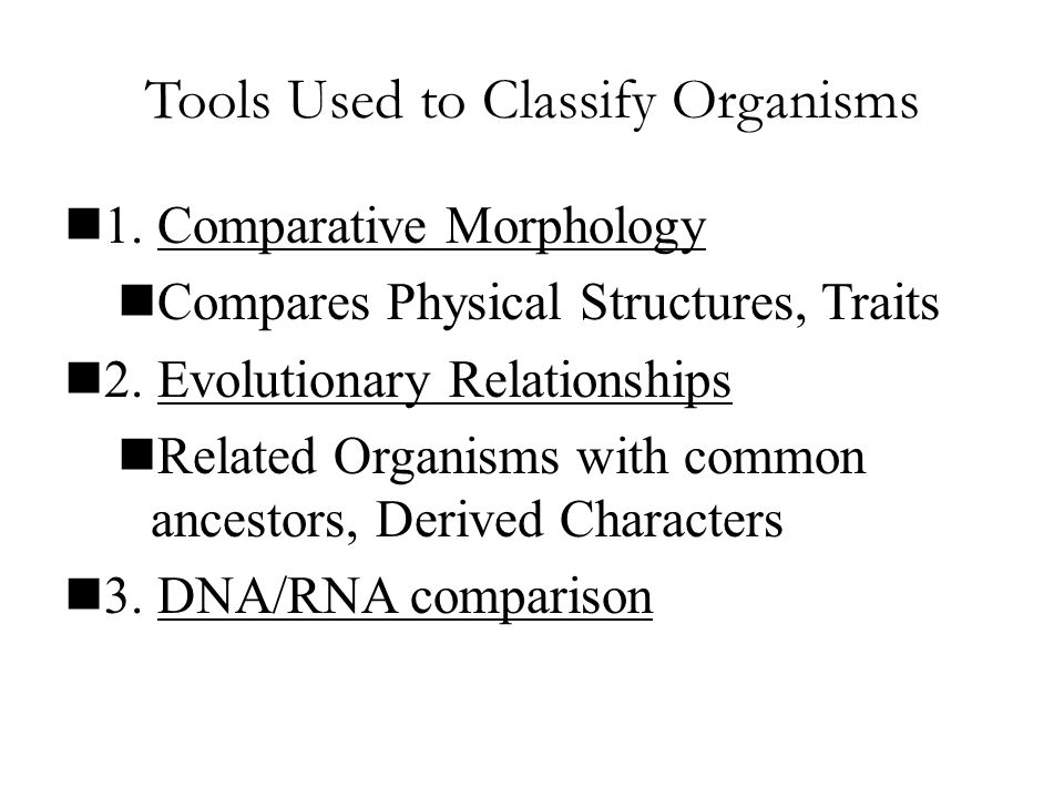 Tools Used to Classify Organisms