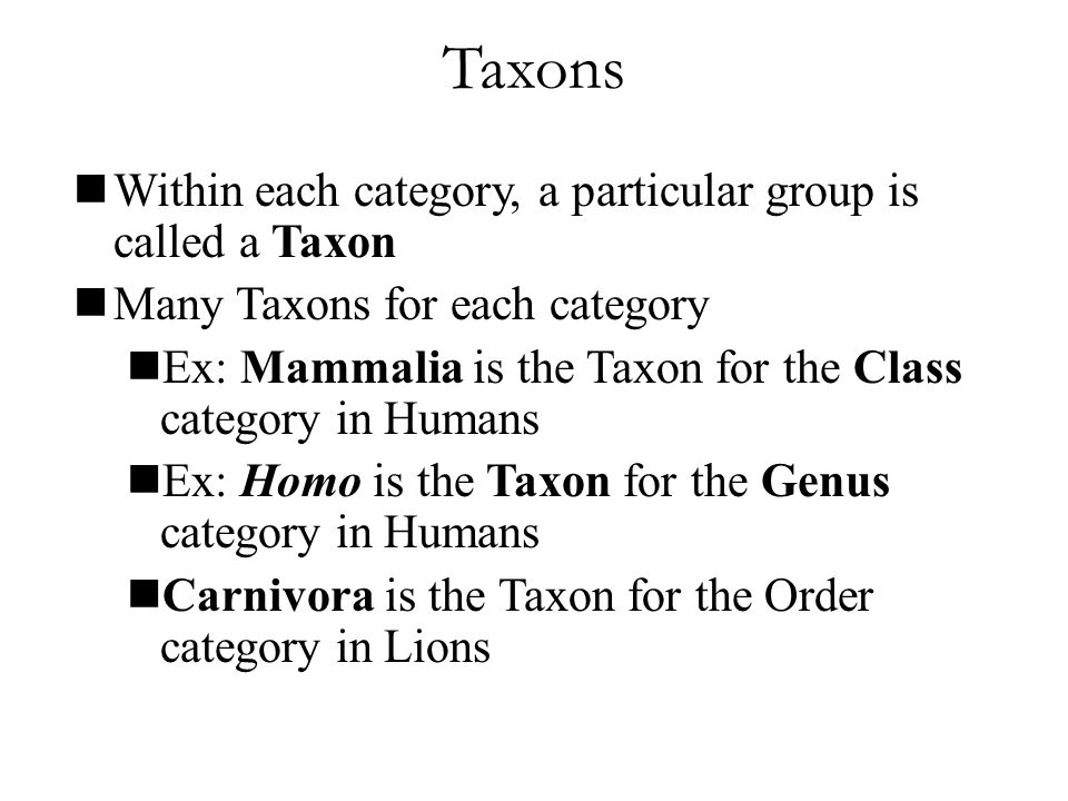 Taxons Within each category, a particular group is called a Taxon