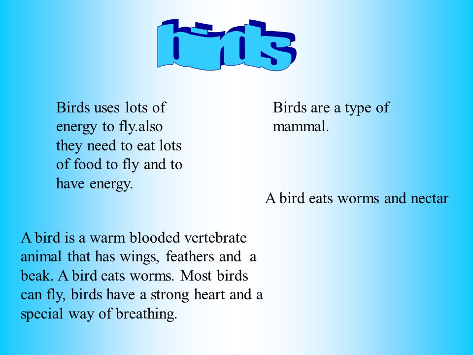 birds Birds uses lots of energy to fly.also they need to eat lots of food to fly and to have energy.
