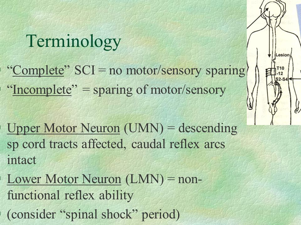 Terminology Complete SCI = no motor/sensory sparing