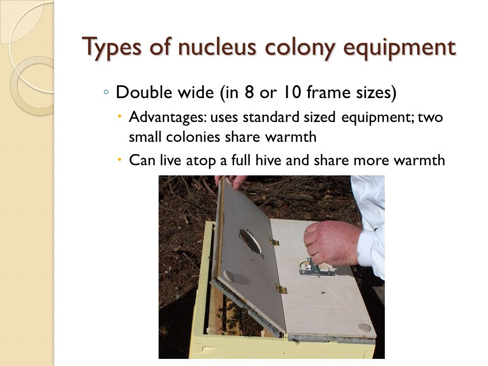 Types of nucleus colony equipment