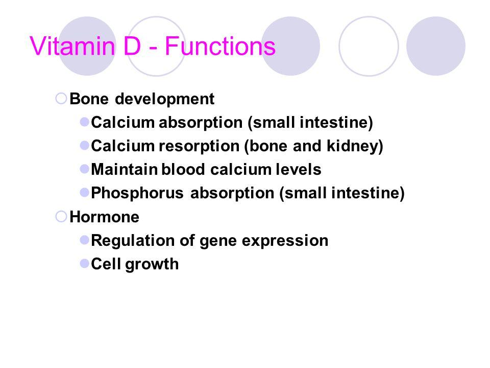 Vitamin D - Functions Bone development