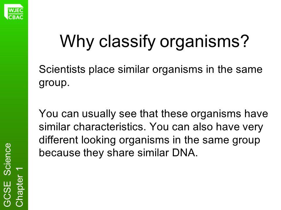 Why classify organisms