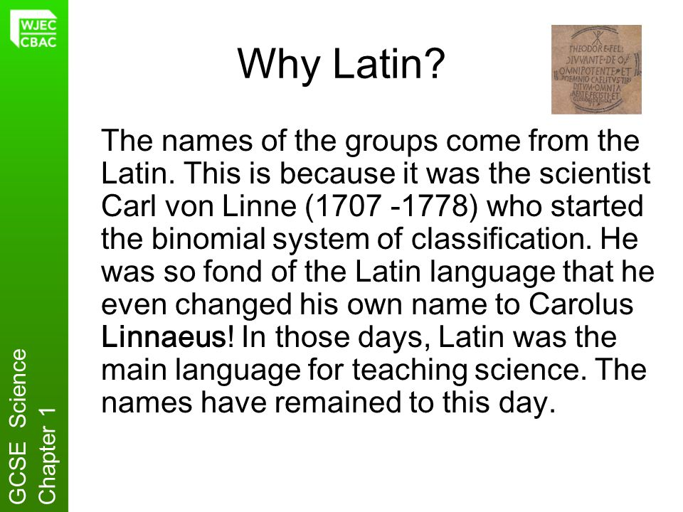 Why Latin