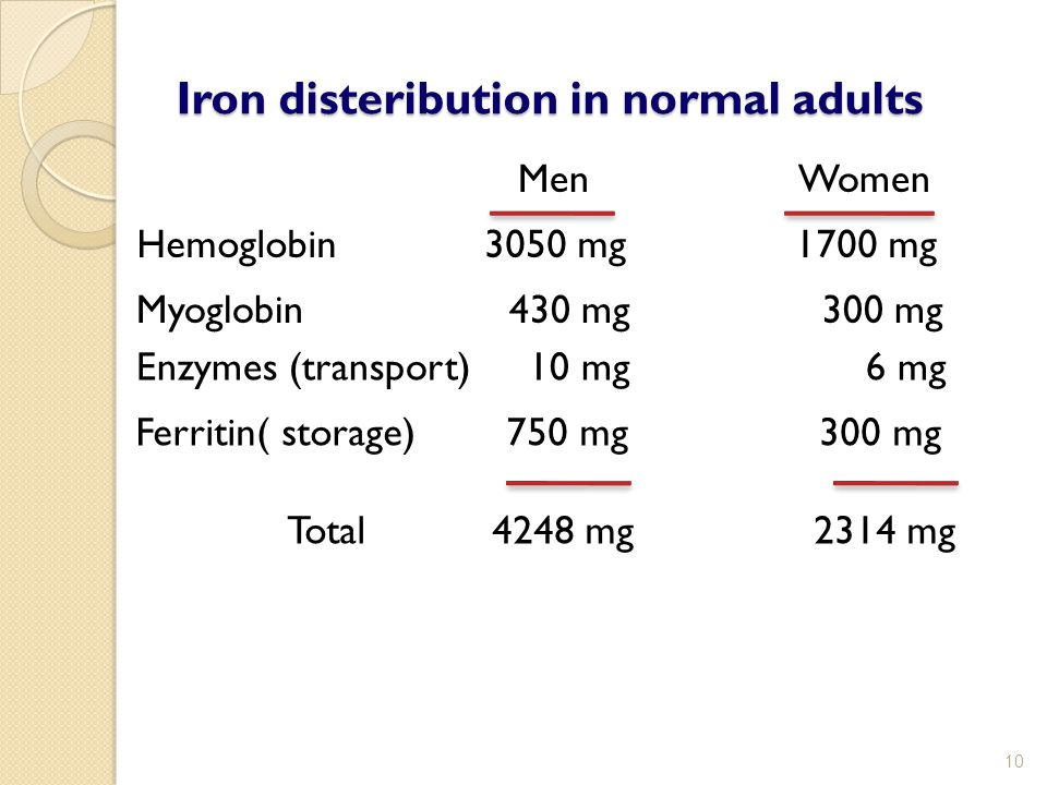 Iron disteribution in normal adults