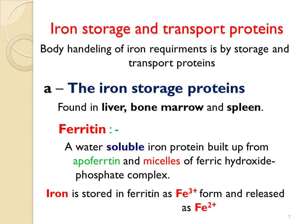 Iron storage and transport proteins