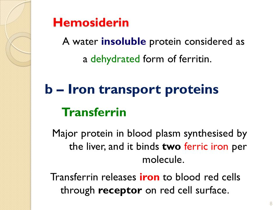 b – Iron transport proteins