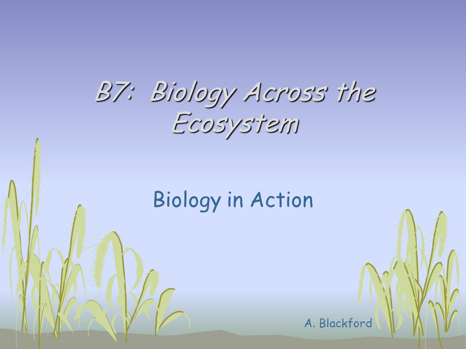 B7: Biology Across the Ecosystem