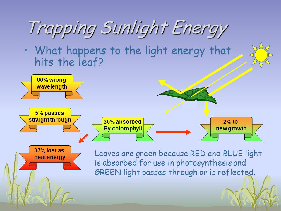 Trapping Sunlight Energy