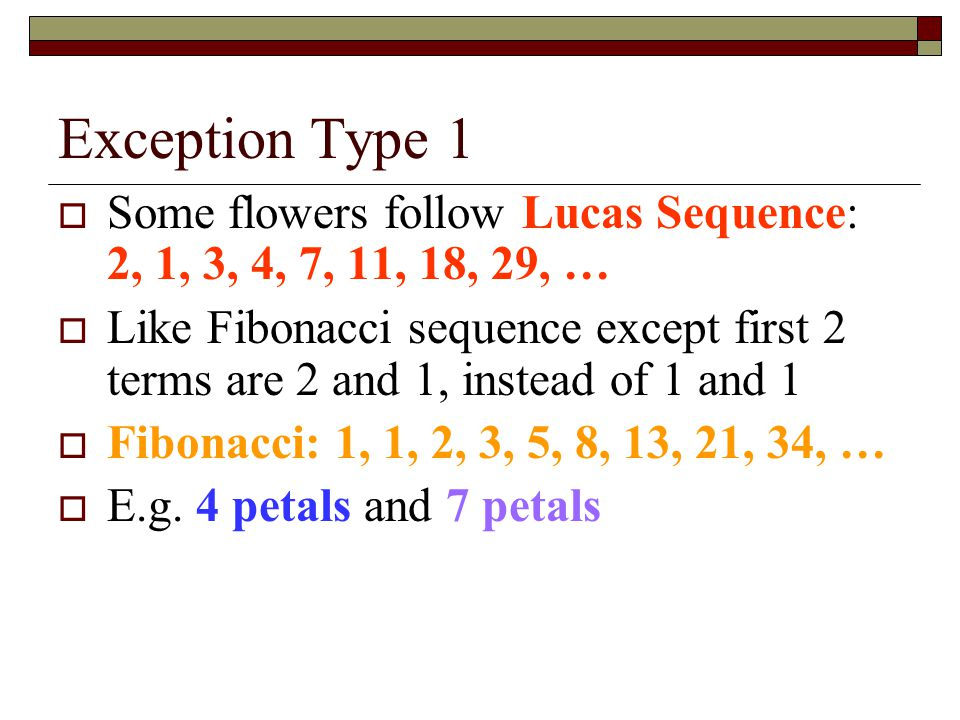 Exception Type 1 Some flowers follow Lucas Sequence: 2, 1, 3, 4, 7, 11, 18, 29, …