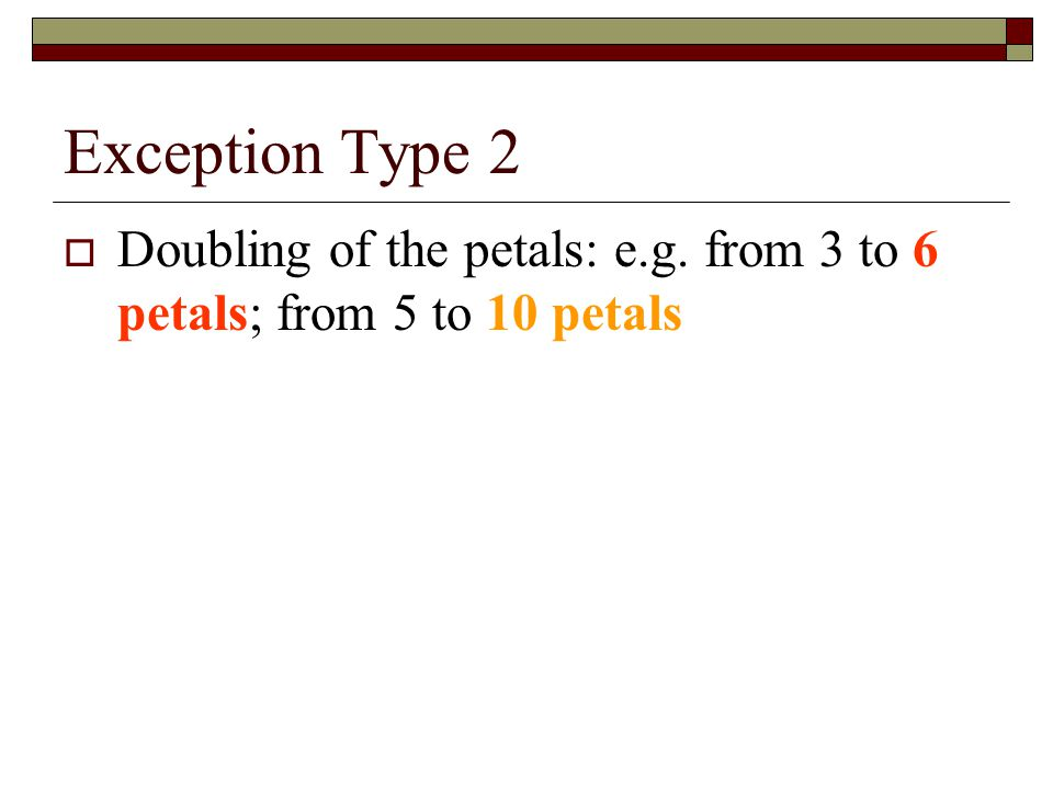 Exception Type 2 Doubling of the petals: e.g. from 3 to 6 petals; from 5 to 10 petals