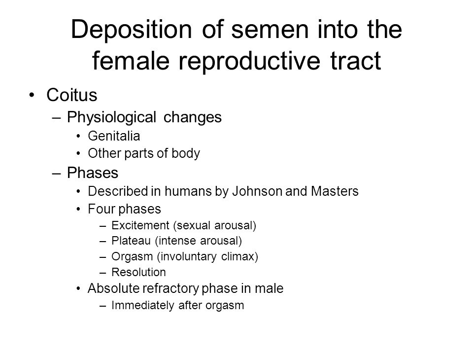 Deposition of semen into the female reproductive tract