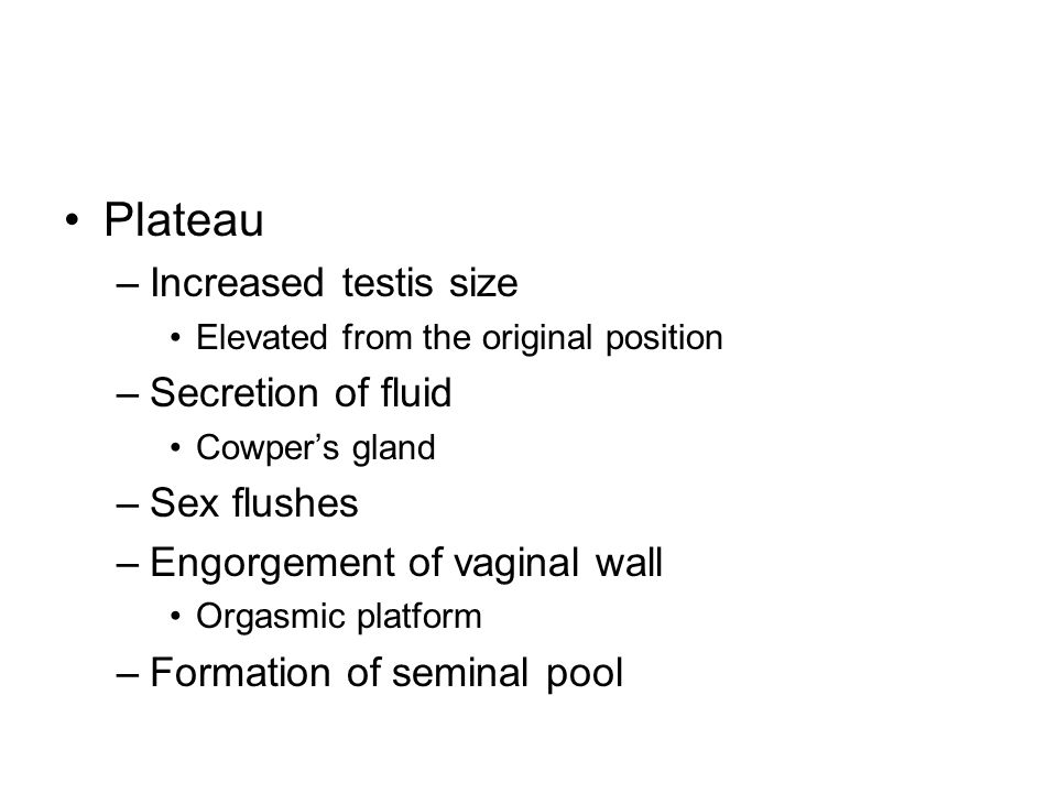 Plateau Increased testis size Secretion of fluid Sex flushes