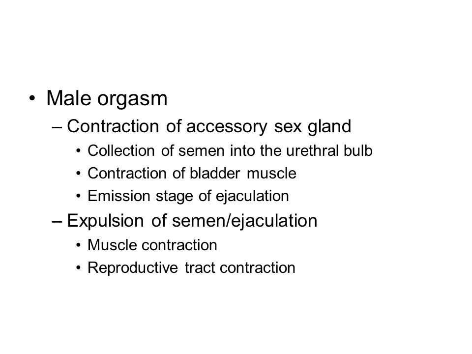 Male orgasm Contraction of accessory sex gland