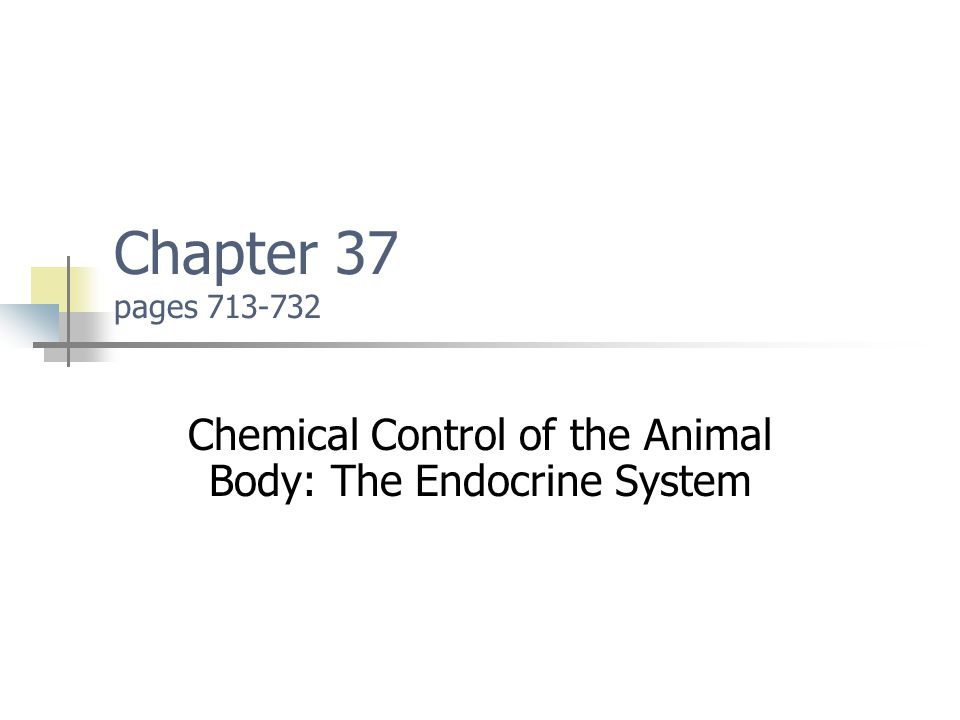 Chemical Control of the Animal Body: The Endocrine System