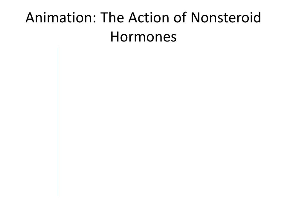 Animation: The Action of Nonsteroid Hormones