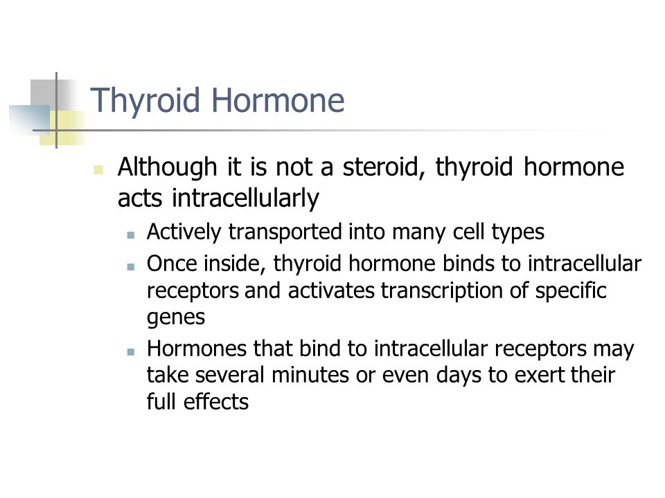 Thyroid Hormone Although it is not a steroid, thyroid hormone acts intracellularly. Actively transported into many cell types.