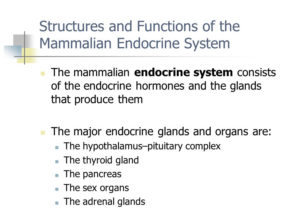 Structures and Functions of the Mammalian Endocrine System