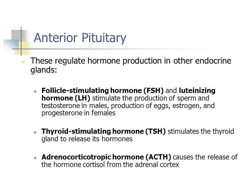 Anterior Pituitary These regulate hormone production in other endocrine glands: