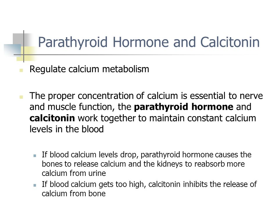 Parathyroid Hormone and Calcitonin