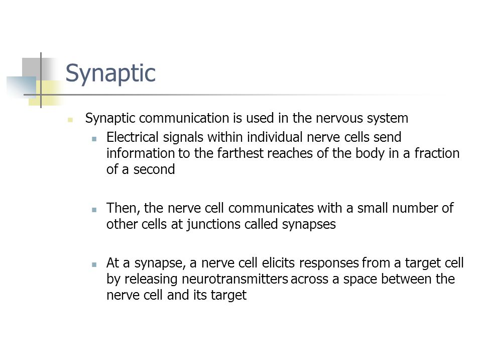 Synaptic Synaptic communication is used in the nervous system