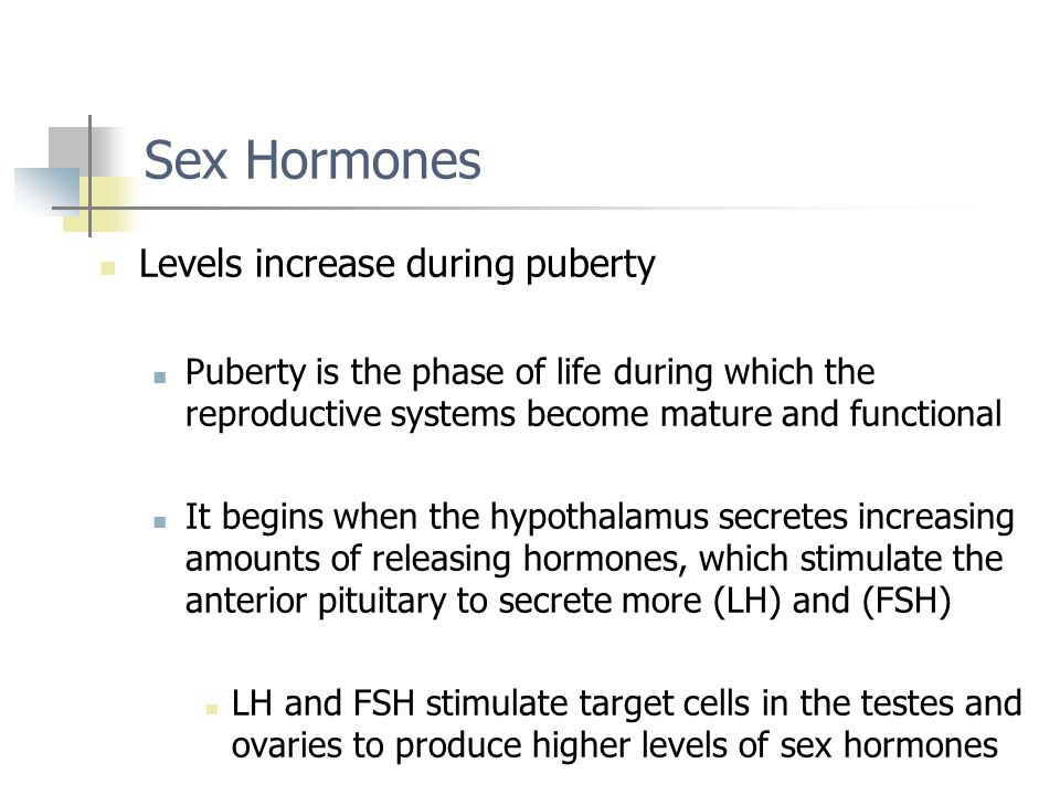 Sex Hormones Levels increase during puberty
