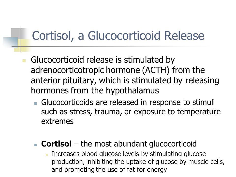 Cortisol, a Glucocorticoid Release
