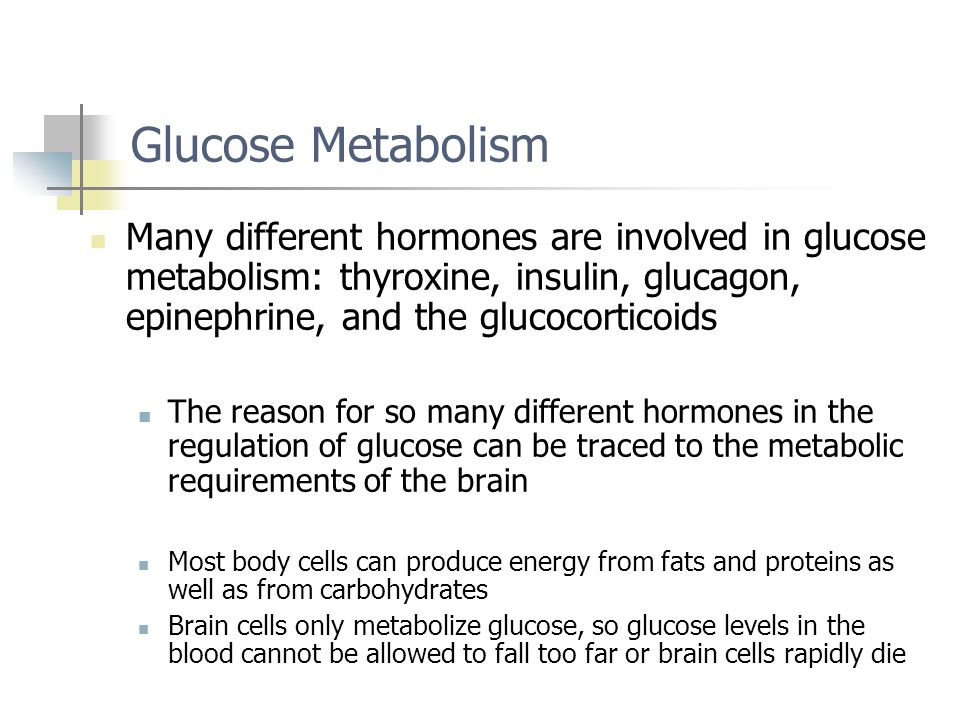 Glucose Metabolism Many different hormones are involved in glucose metabolism: thyroxine, insulin, glucagon, epinephrine, and the glucocorticoids.