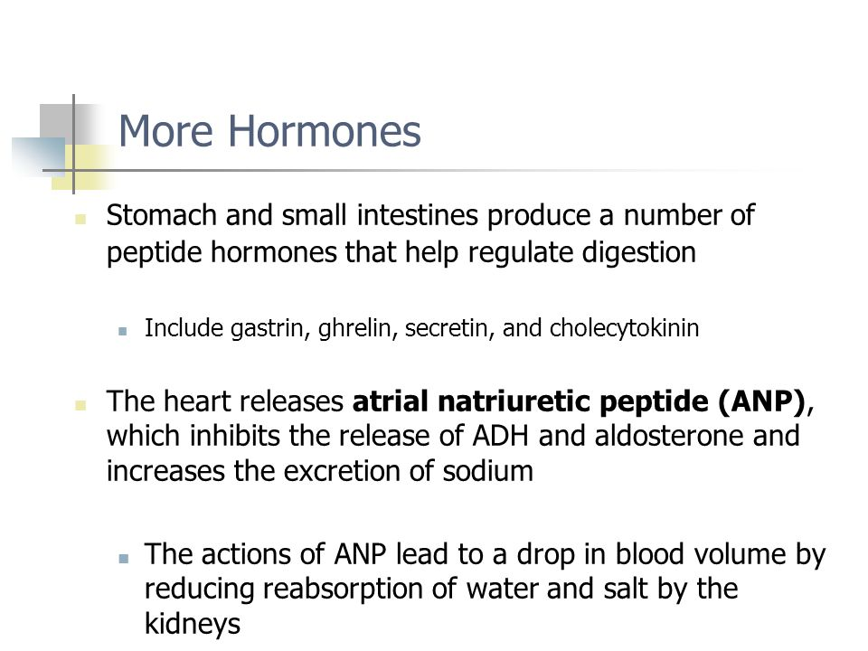 More Hormones Stomach and small intestines produce a number of peptide hormones that help regulate digestion.