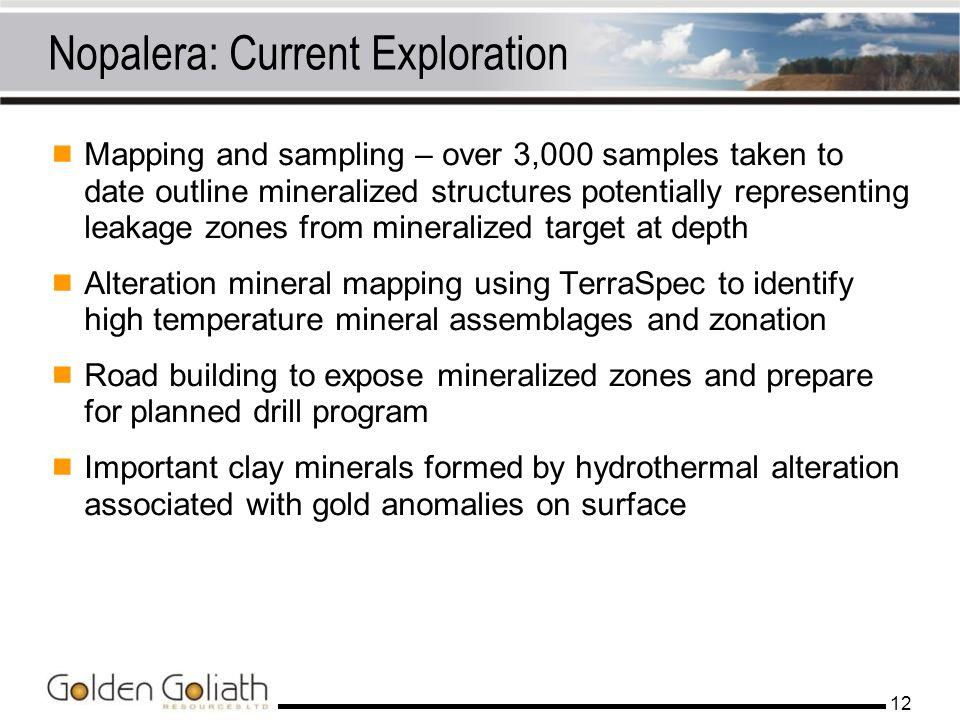 Nopalera: Current Exploration