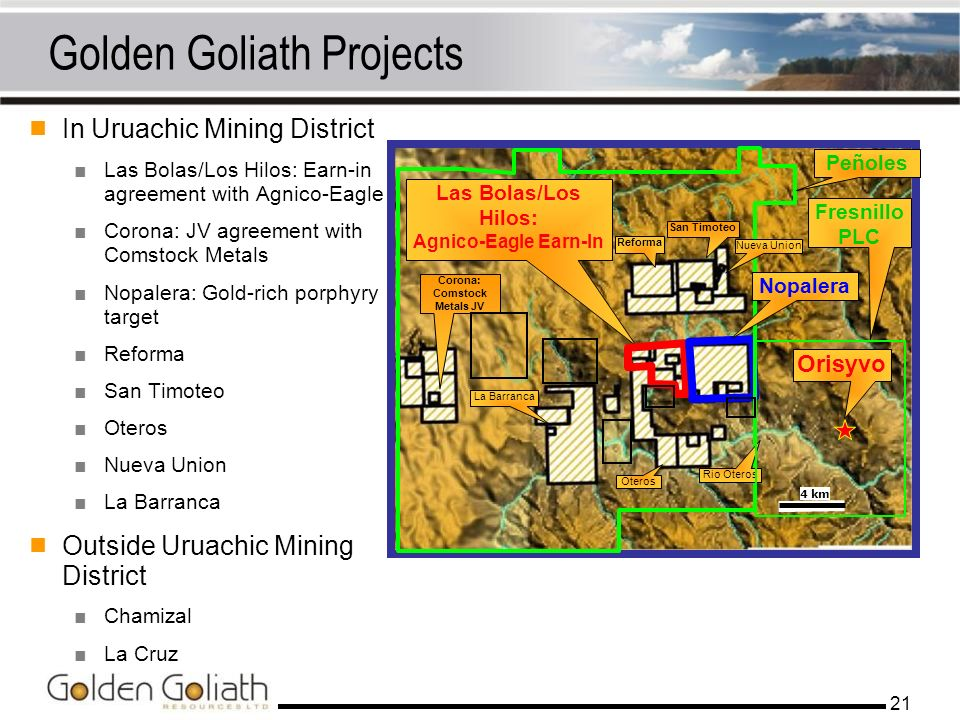 Golden Goliath Projects