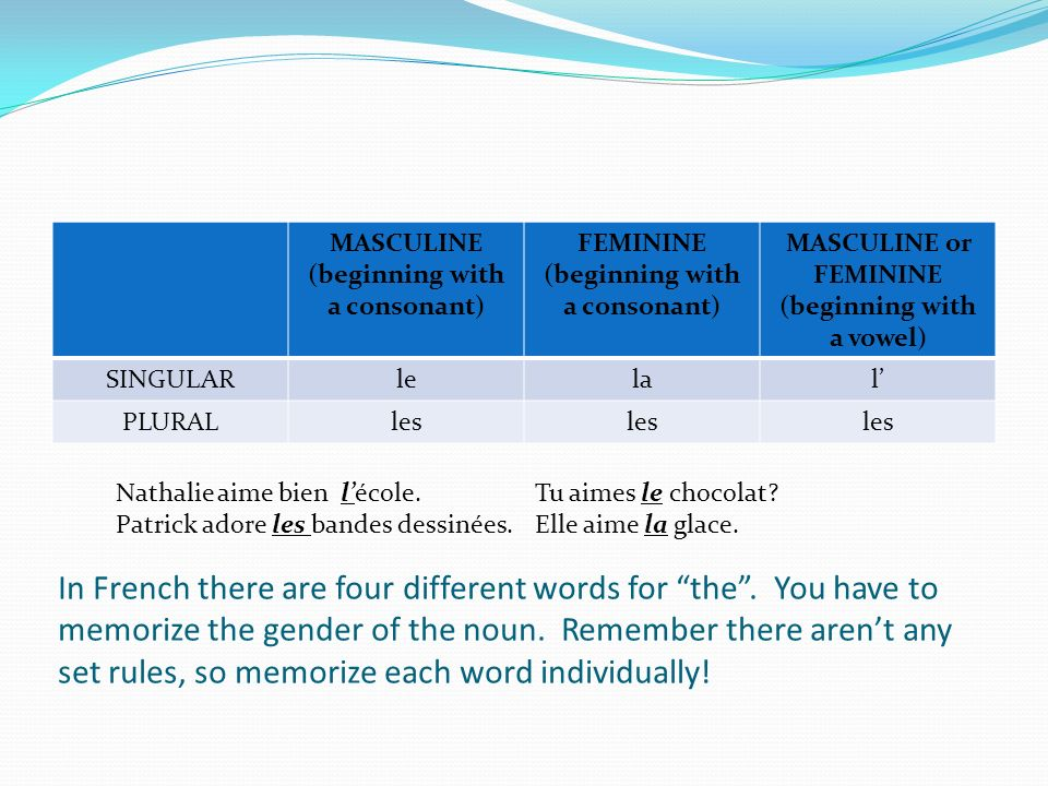 MASCULINE (beginning with a consonant)