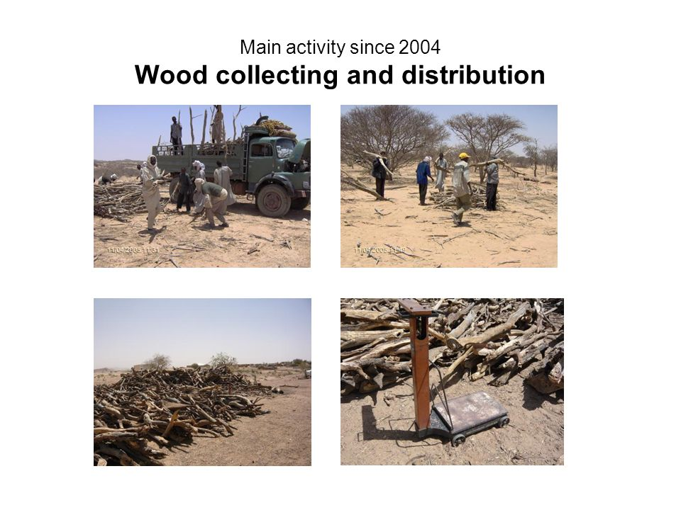 Main activity since 2004 Wood collecting and distribution