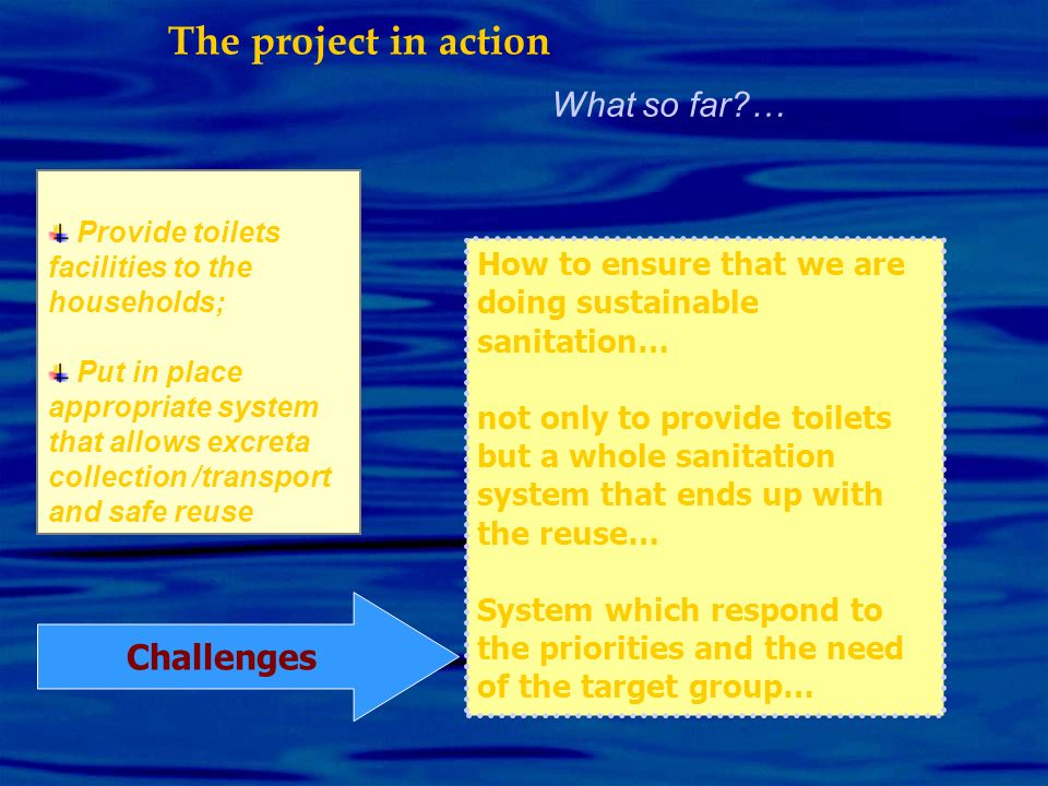 The project in action What so far … Challenges