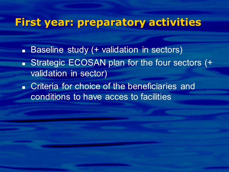 First year: preparatory activities